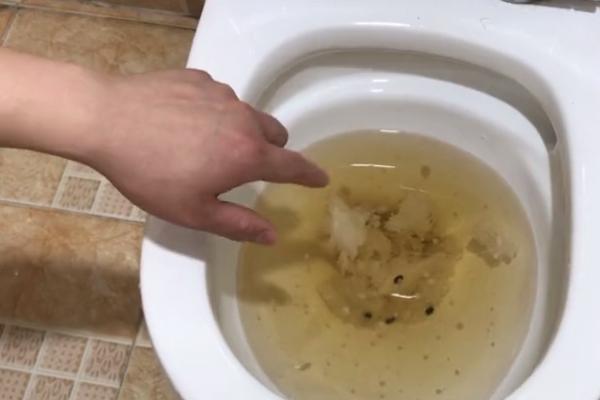 馬桶堵了但還緩慢下水怎么辦?1